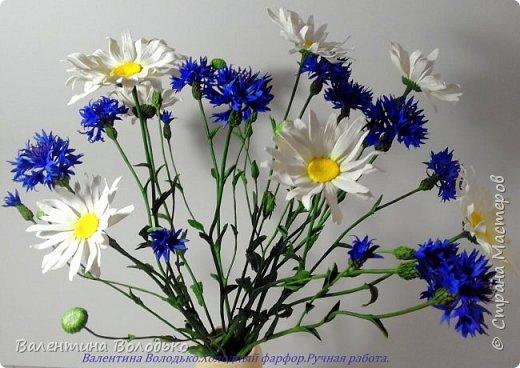 Добрый день мастера и мастерицы!!!!Уже осень пришла,а у меня все еще васильки с ромашками расцветают. фото 2