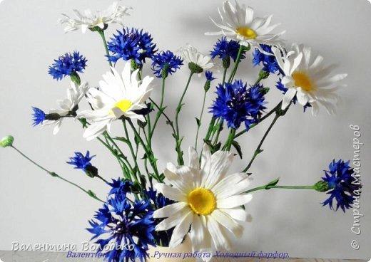 Добрый день мастера и мастерицы!!!!Уже осень пришла,а у меня все еще васильки с ромашками расцветают. фото 3