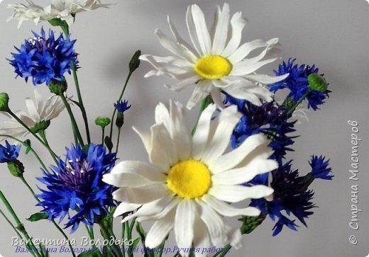 Добрый день мастера и мастерицы!!!!Уже осень пришла,а у меня все еще васильки с ромашками расцветают. фото 4