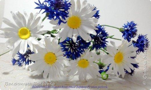 Добрый день мастера и мастерицы!!!!Уже осень пришла,а у меня все еще васильки с ромашками расцветают. фото 1