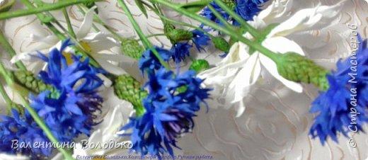 Добрый день мастера и мастерицы!!!!Уже осень пришла,а у меня все еще васильки с ромашками расцветают. фото 7