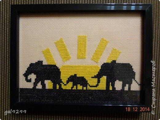 Вышивала таких слоников родителям на разные совместные даты.  Почти монохром. Схема из просторов интернета. Вышито на персиковой канве. фото 1
