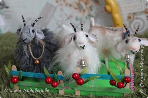 Молочные КОЗОЧКИ,созданы по мастер классу  ЕЛЕНЫ ЗЛОКАЗОВОЙ,можно здесь посмотреть http://www.liveinternet.ru/users/libava/post339370895/  .  Я вместо льна,использовала бинтик,на копыта сварила фарфор из соды и кукурузного крахмала,тонировала просто тенями.  .Козочки получились супер,такие все любопытные. фото 1