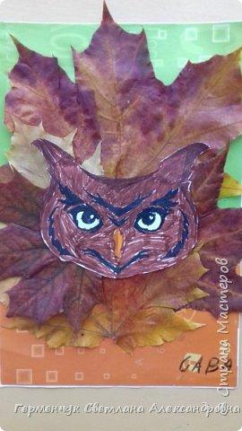 """Сегодня на уроке  трудового обучения  с ребятами 3 """"А"""" класса  работали  с осенними листьями по теме """" Осень в лесу""""   У всех ребят получились вот такие красивые работы!!! фото 21"""
