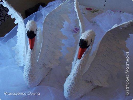 Пара прекрасных лебедей из фоамирана в натуральную величину фото 3