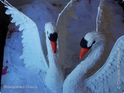 Пара прекрасных лебедей из фоамирана в натуральную величину фото 5