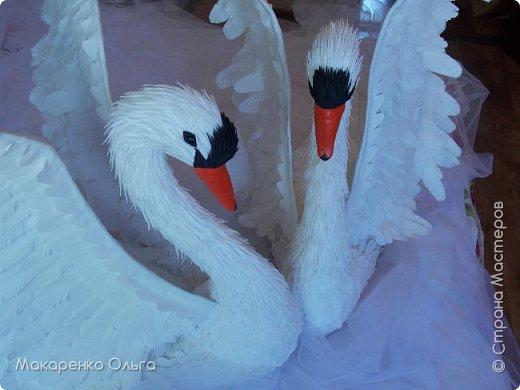Пара прекрасных лебедей из фоамирана в натуральную величину фото 6