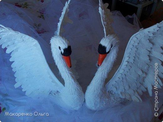 Пара прекрасных лебедей из фоамирана в натуральную величину фото 1