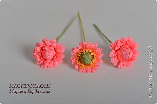 Здравствуйте, дорогие мастерицы. Сегодня хочу рассказать и показать вам как сделать цветок бессмертник из гофрированной бумаги с конфеткой. фото 12