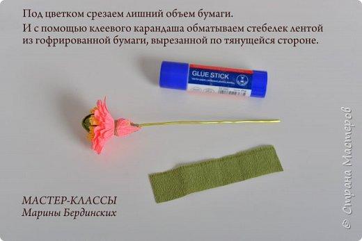 Здравствуйте, дорогие мастерицы. Сегодня хочу рассказать и показать вам как сделать цветок бессмертник из гофрированной бумаги с конфеткой. фото 11