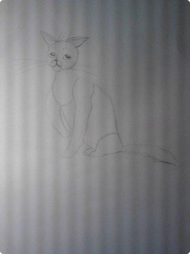 Крутобок, персонаж Котов - Воителей. фото 2