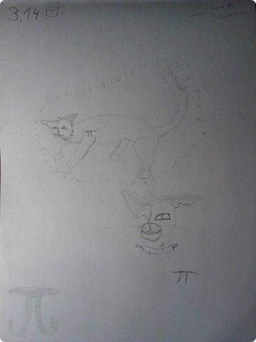 Крутобок, персонаж Котов - Воителей. фото 6