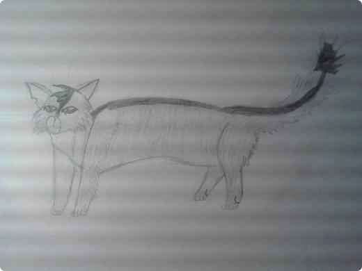 Крутобок, персонаж Котов - Воителей. фото 1