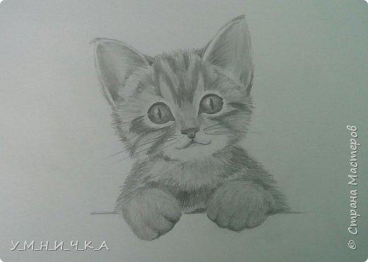 Вот такой пушистик получился ) хотя, честно сказать, котов я вообще не люблю... фото 2