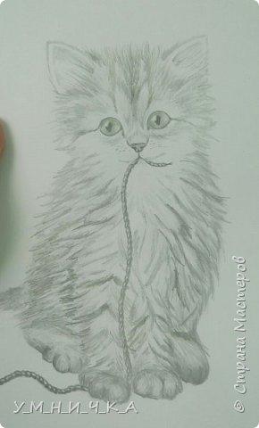 Вот такой пушистик получился ) хотя, честно сказать, котов я вообще не люблю... фото 1