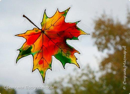 Наступила осень - пора дождей, ОРЗ и творчества. Деревья на улице - глаз не оторвать. Особенно прекрасны клены. И нельзя не собрать букет листьев. Но листья скручиваются, а если засушить - блекнут. А так хочется сохранить их красоту. Поэтому я выбираю технику витража и делаю листья из пластиковых обложек. Пусть светятся в пасмурный день. фото 1