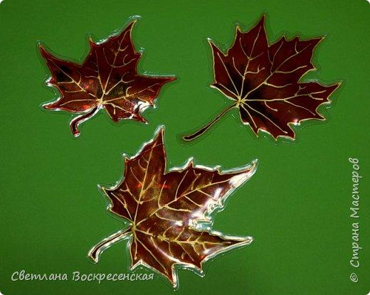 Наступила осень - пора дождей, ОРЗ и творчества. Деревья на улице - глаз не оторвать. Особенно прекрасны клены. И нельзя не собрать букет листьев. Но листья скручиваются, а если засушить - блекнут. А так хочется сохранить их красоту. Поэтому я выбираю технику витража и делаю листья из пластиковых обложек. Пусть светятся в пасмурный день. фото 11