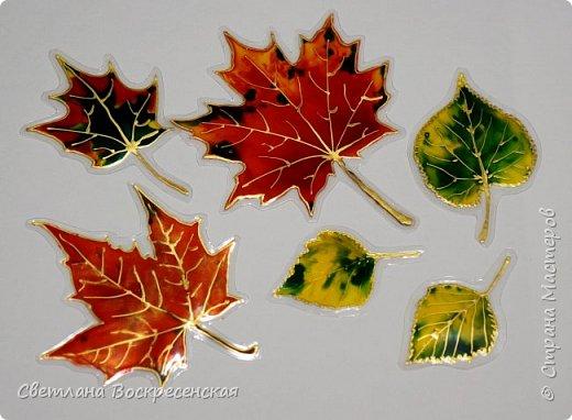 Наступила осень - пора дождей, ОРЗ и творчества. Деревья на улице - глаз не оторвать. Особенно прекрасны клены. И нельзя не собрать букет листьев. Но листья скручиваются, а если засушить - блекнут. А так хочется сохранить их красоту. Поэтому я выбираю технику витража и делаю листья из пластиковых обложек. Пусть светятся в пасмурный день. фото 14
