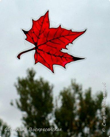 Наступила осень - пора дождей, ОРЗ и творчества. Деревья на улице - глаз не оторвать. Особенно прекрасны клены. И нельзя не собрать букет листьев. Но листья скручиваются, а если засушить - блекнут. А так хочется сохранить их красоту. Поэтому я выбираю технику витража и делаю листья из пластиковых обложек. Пусть светятся в пасмурный день. фото 12
