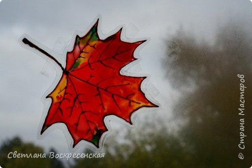 Наступила осень - пора дождей, ОРЗ и творчества. Деревья на улице - глаз не оторвать. Особенно прекрасны клены. И нельзя не собрать букет листьев. Но листья скручиваются, а если засушить - блекнут. А так хочется сохранить их красоту. Поэтому я выбираю технику витража и делаю листья из пластиковых обложек. Пусть светятся в пасмурный день. фото 13