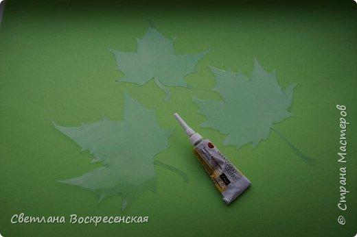 Наступила осень - пора дождей, ОРЗ и творчества. Деревья на улице - глаз не оторвать. Особенно прекрасны клены. И нельзя не собрать букет листьев. Но листья скручиваются, а если засушить - блекнут. А так хочется сохранить их красоту. Поэтому я выбираю технику витража и делаю листья из пластиковых обложек. Пусть светятся в пасмурный день. фото 5