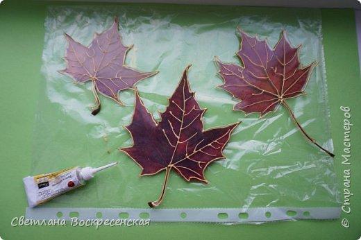 Наступила осень - пора дождей, ОРЗ и творчества. Деревья на улице - глаз не оторвать. Особенно прекрасны клены. И нельзя не собрать букет листьев. Но листья скручиваются, а если засушить - блекнут. А так хочется сохранить их красоту. Поэтому я выбираю технику витража и делаю листья из пластиковых обложек. Пусть светятся в пасмурный день. фото 7
