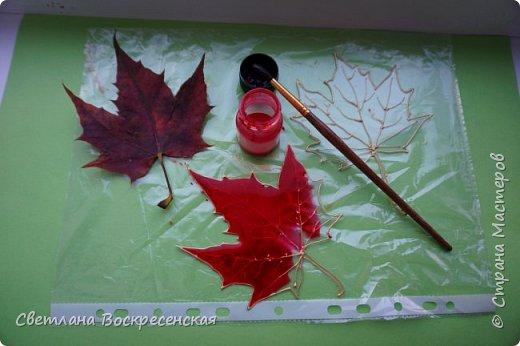 Наступила осень - пора дождей, ОРЗ и творчества. Деревья на улице - глаз не оторвать. Особенно прекрасны клены. И нельзя не собрать букет листьев. Но листья скручиваются, а если засушить - блекнут. А так хочется сохранить их красоту. Поэтому я выбираю технику витража и делаю листья из пластиковых обложек. Пусть светятся в пасмурный день. фото 8