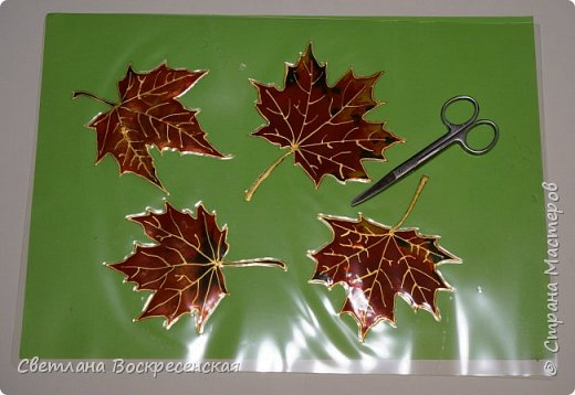 Наступила осень - пора дождей, ОРЗ и творчества. Деревья на улице - глаз не оторвать. Особенно прекрасны клены. И нельзя не собрать букет листьев. Но листья скручиваются, а если засушить - блекнут. А так хочется сохранить их красоту. Поэтому я выбираю технику витража и делаю листья из пластиковых обложек. Пусть светятся в пасмурный день. фото 9