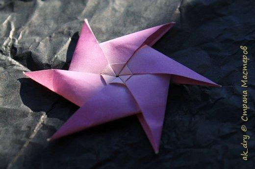 HPBD star фото 4