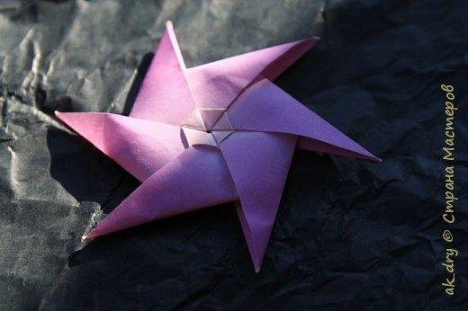 HPBD star фото 5
