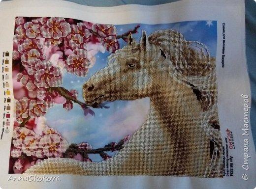 Сделано на подарок подруге. Она родилась в год лошади и под руку мне попалась вот эта картина. Шикарно получилось. фото 3