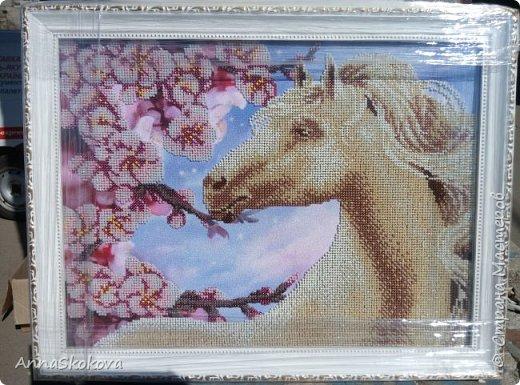 Сделано на подарок подруге. Она родилась в год лошади и под руку мне попалась вот эта картина. Шикарно получилось. фото 1