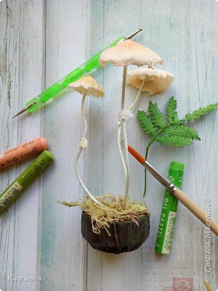 Добрый вечер! Сегодня  я с грибами) Осень... не только по календарю, но и  в творчестве. Вот такие поганочки вырастила) фото 2