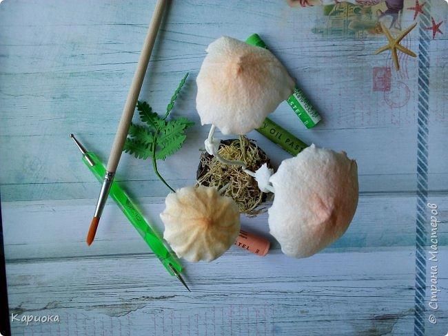 Добрый вечер! Сегодня  я с грибами) Осень... не только по календарю, но и  в творчестве. Вот такие поганочки вырастила) фото 4