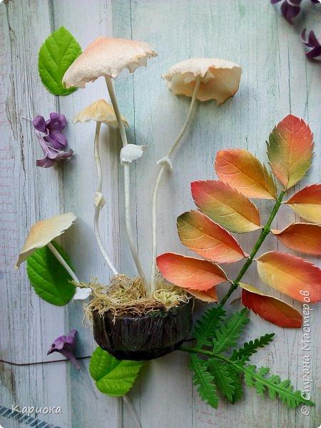 Добрый вечер! Сегодня  я с грибами) Осень... не только по календарю, но и  в творчестве. Вот такие поганочки вырастила) фото 1