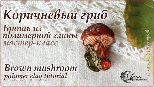 Брошь с грибом из полимерной глины фото 1