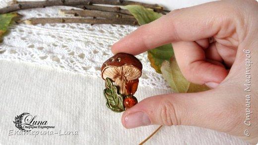 Брошь с грибом из полимерной глины фото 2