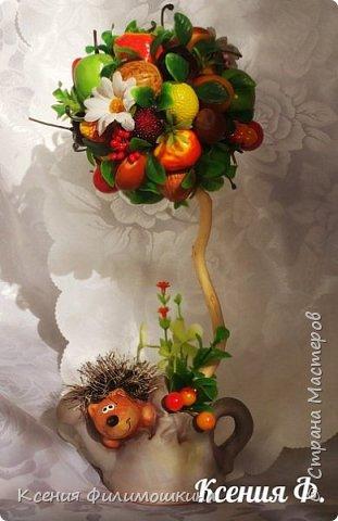 Сегодня захотелось поделиться с вам мои вкусными и яркими фруктовыми деревьями, я их очень люблю, с каждым из них связано свое настроение, событие, эмоции, приятного просмотра) фото 1