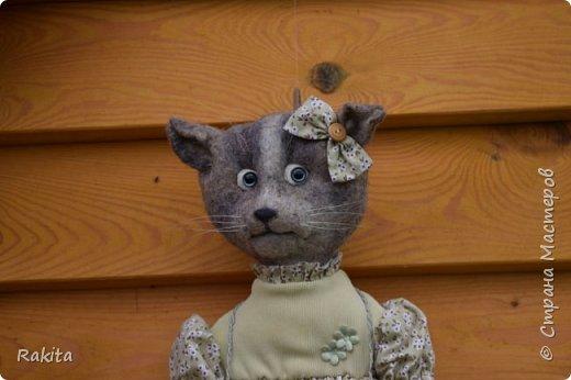 Кошка Маха пакетница фото 6