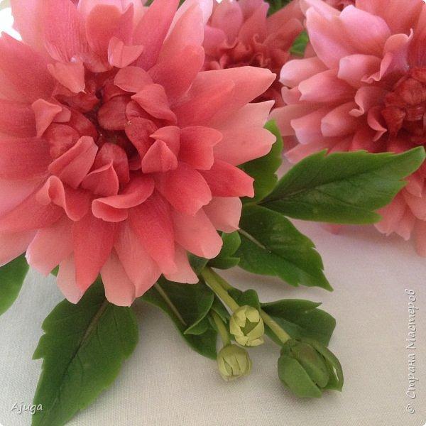 Интерьерные цветы ручной работы . Георгины из холодного фарфора. фото 7
