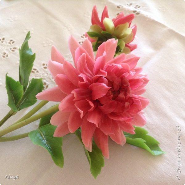 Интерьерные цветы ручной работы . Георгины из холодного фарфора. фото 12
