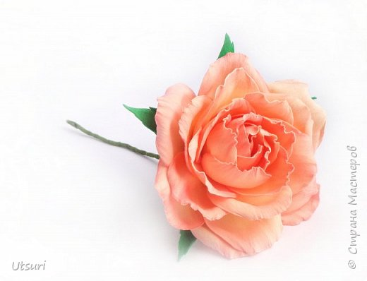 Розы из фома фото 2