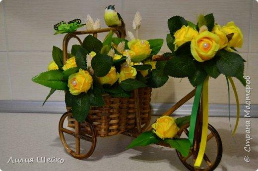 Велосипед-топиарий фото 1