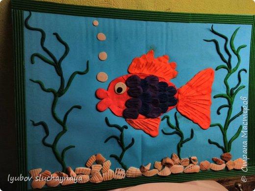 Рыбка в аквариуме фото 2
