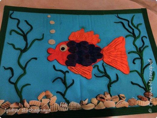Рыбка в аквариуме фото 1
