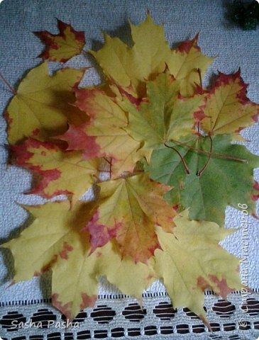 Доброго времени суток всем мастерам и мастерицам СМ. Несмотря на дожди каждый день, на улице все же одна из самых красивейших пор года - золотая осень . Так хочется собрать все листья, наделать различных поделок.  фото 1