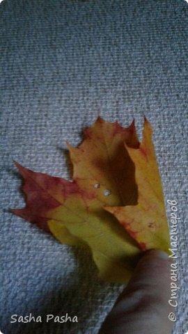 Доброго времени суток всем мастерам и мастерицам СМ. Несмотря на дожди каждый день, на улице все же одна из самых красивейших пор года - золотая осень . Так хочется собрать все листья, наделать различных поделок.  фото 4