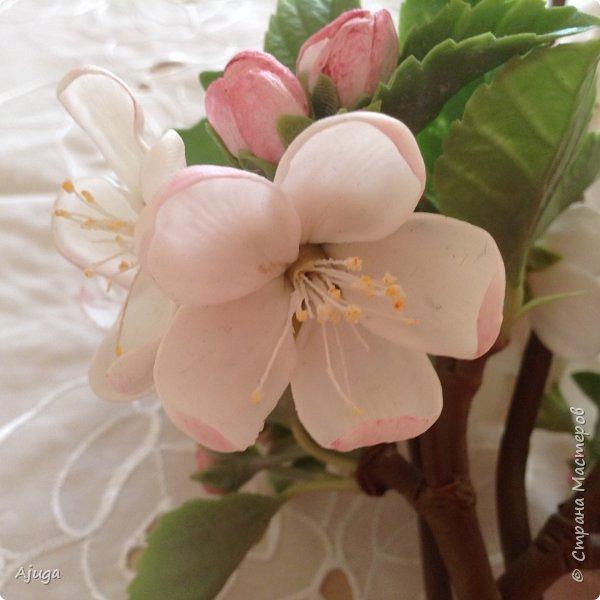 Цветы запоздалые..... Яблоневый цвет из полимерной глины . Ручная работа.