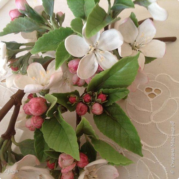 Цветы запоздалые..... Яблоневый цвет из полимерной глины . Ручная работа. фото 2