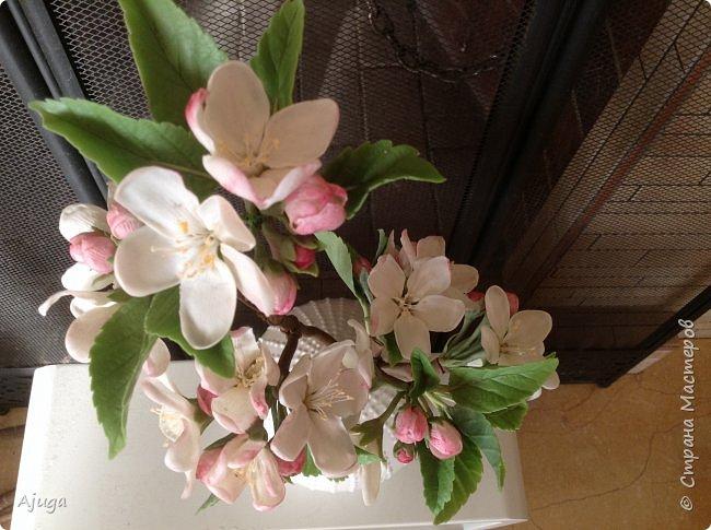 Цветы запоздалые..... Яблоневый цвет из полимерной глины . Ручная работа. фото 9